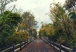 Buffalo Valley Rail Trail
